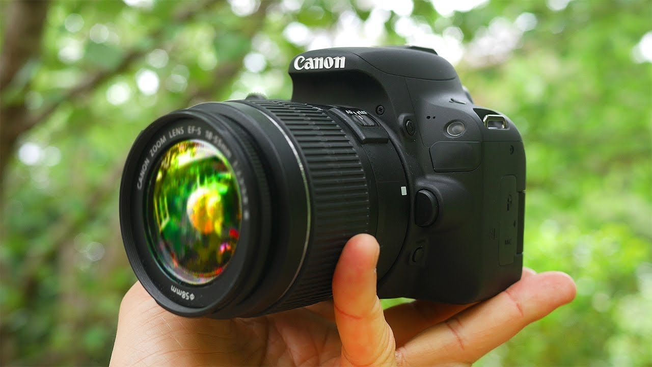 Best Cameras for Beginners - Reaching World Live